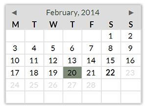 Calendar Field