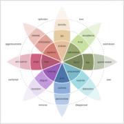 Emotion Detection - Plutchik's Wheel of Emotions